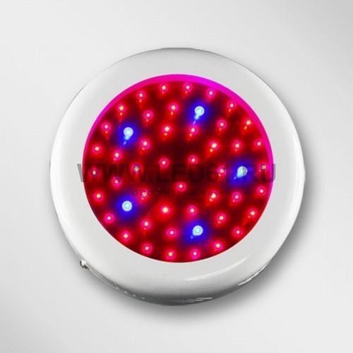 Светодиодный светильник для растений 50 Вт